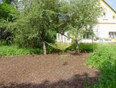 boomgaard met hangmatplek